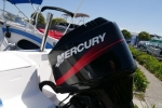 Haines Signature 530BR Bow Rider for sale in Braeside, Victoria (ID-60)